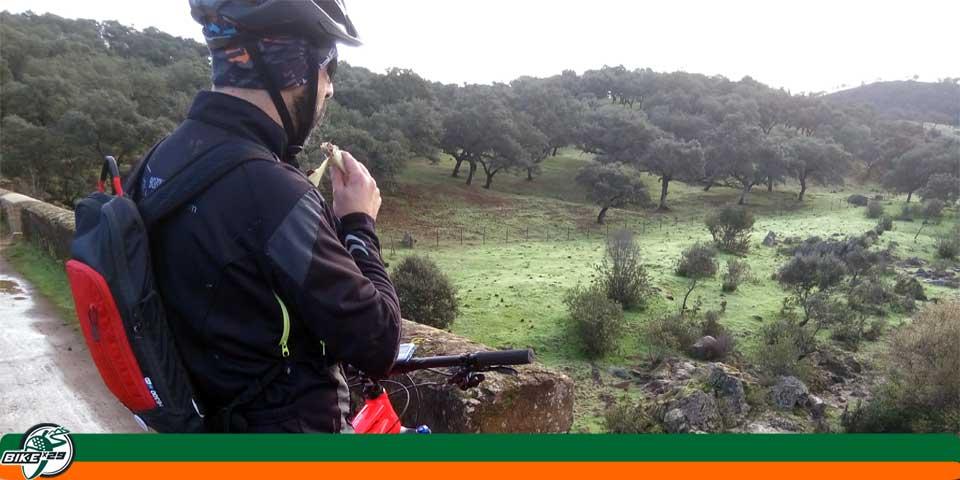 bikex29_ruta_1_puente