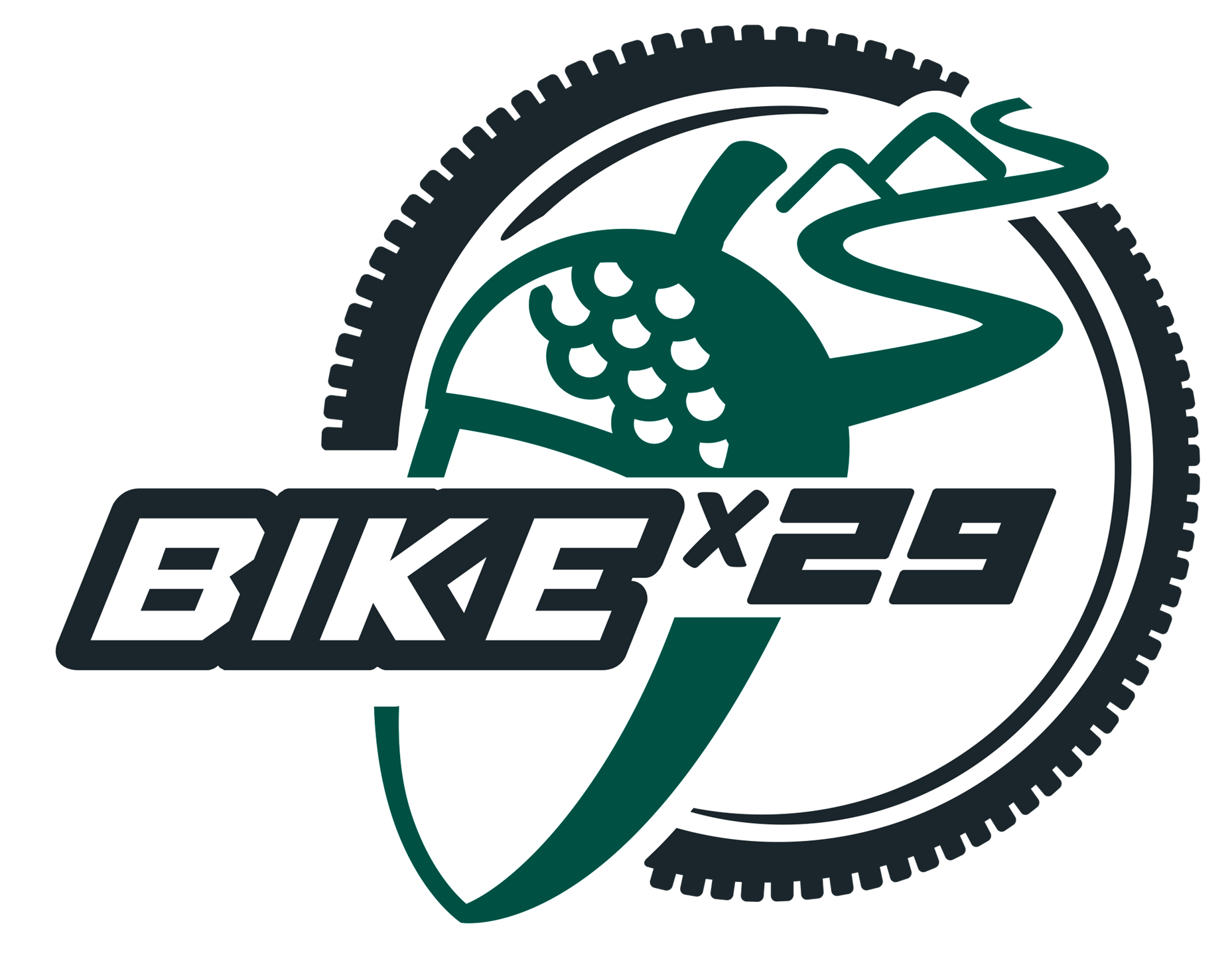 Bike x 29