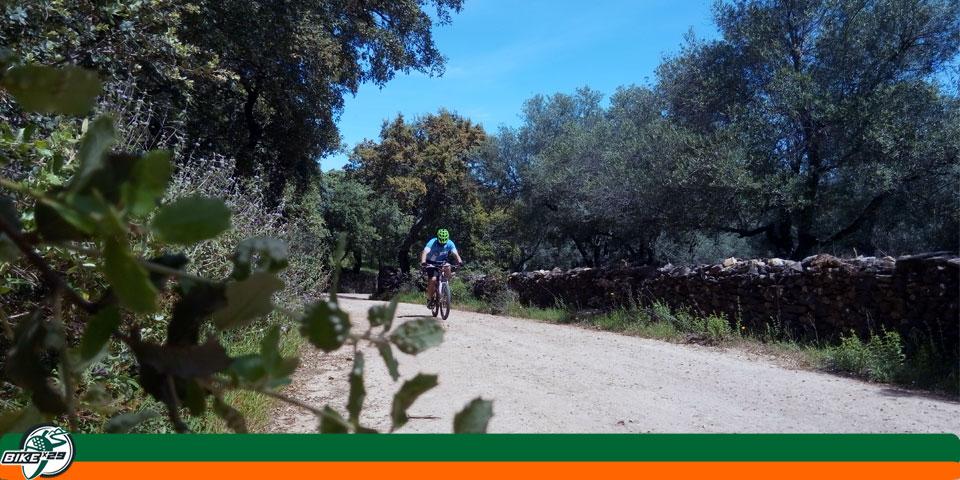 Ruta_8_bikex29_btt_hinojales_cumbres_mayores_camino_de_la_vibora