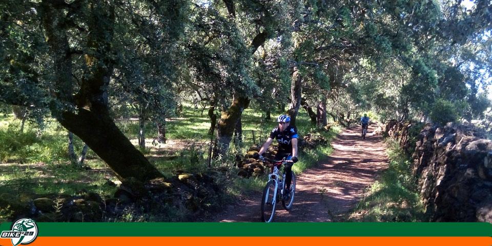 Ruta_8_bikex29_btt_hinojales_cumbres_mayores_gr48
