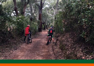 bikex29_ruta9_btt_cortegana_aroche_alcornoques