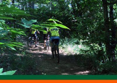 bikex29_ruta_16_bosque_encantado_galaroza_btt_cicloturismo