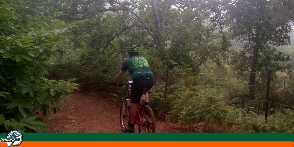 bikex29_ruta_5_btt_cicloturismo_castanos_fuenteheridos_alajar