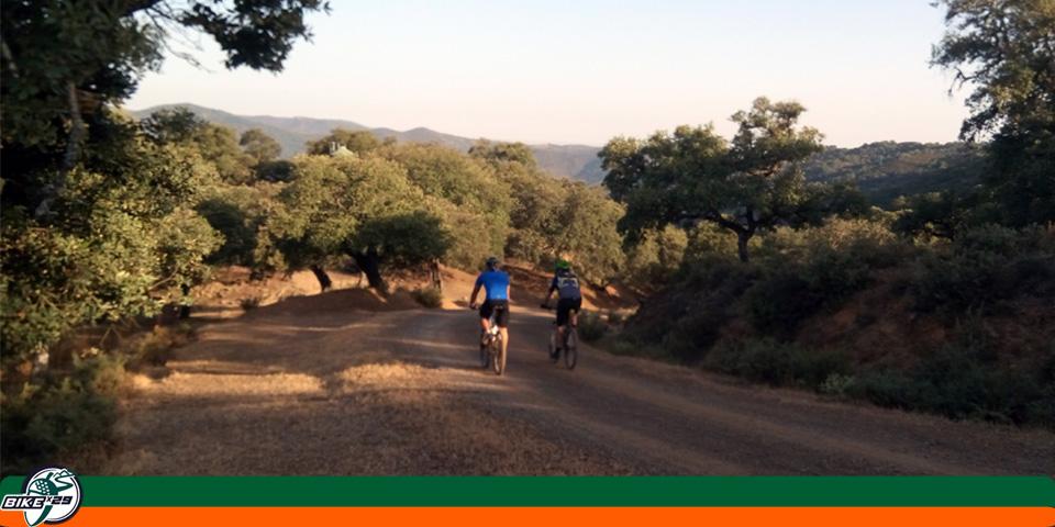 bikex29_ruta_btt_jabugo_Galaroza_La_nava