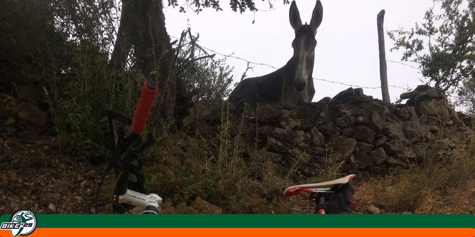 bikex29_ruta_21_la_nava_galaroza_valdelarco_burro